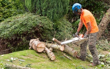 additional services offered by Little Marlow tree surgeons