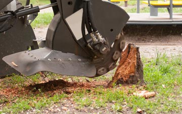 professional Little Marlow stump grinding services