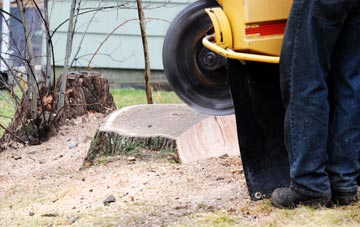 rated Little Marlow tree stump removal companies