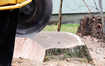 tree stump grinding Little Marlow, Buckinghamshire