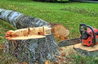 free Little Marlow tree felling quotes