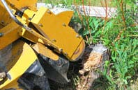 Little Marlow tree stump grinding services