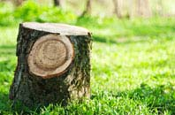 Little Marlow tree stump removal services